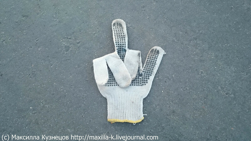 Перчатка брошена