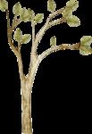 CreatewingsDesigns_R-C23_Tree.png