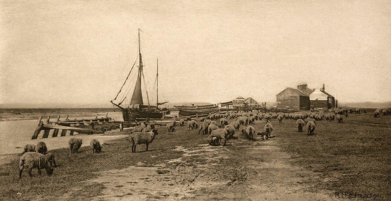 14. На реке Блайт