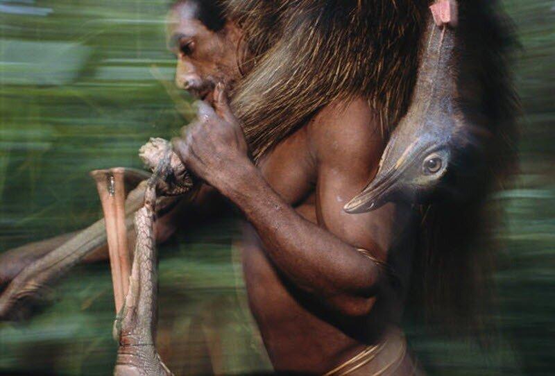 Секс в племенах джунглей смотреть онлайн 4 фотография