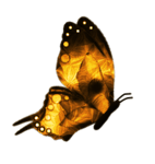 DBV Gold Rush element (54).png