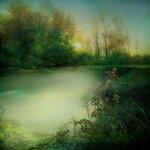 ldavi-paintersfaeries-paper26.jpg