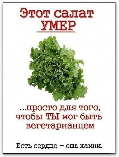 http://img-fotki.yandex.ru/get/5813/130422193.1b/0_66b22_8abffc58_orig