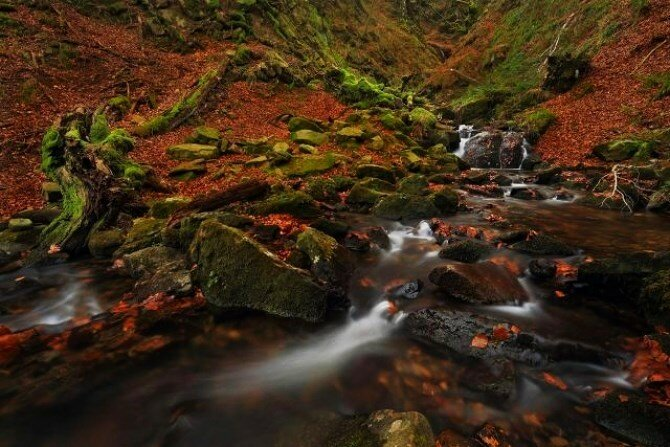 Национальный парк Горбеа (Gorbea Natural Park) - мистический лес северной Испании