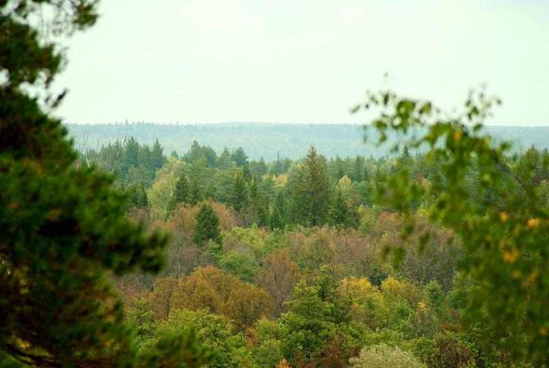Кленовая гора