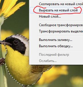 https://img-fotki.yandex.ru/get/5813/231007242.7/0_112324_e2e616f9_orig
