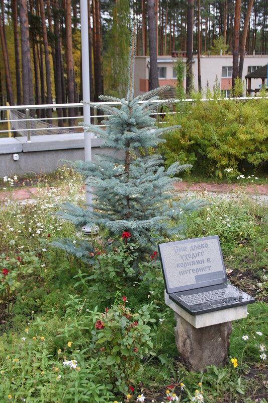 Дерево, уходящее корнями в Интернет