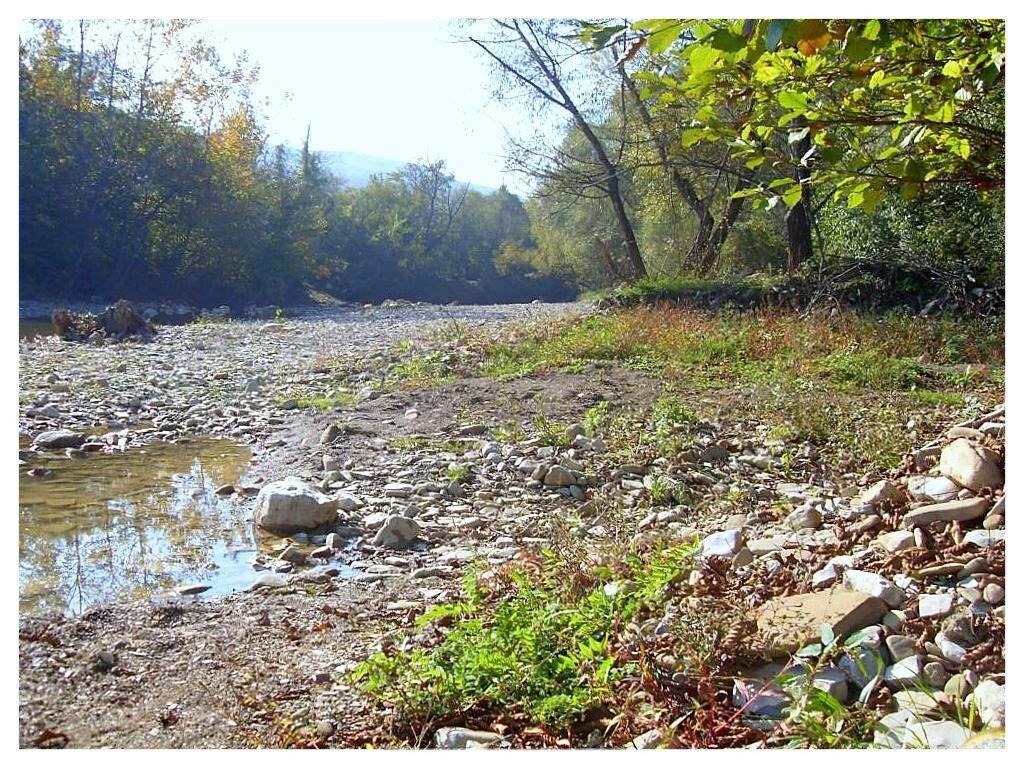 12 октября 2008, под Горячим Ключом, на реке (136).JPG