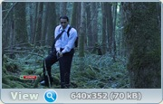 В лесу / The Forest (2011) HDTVRip + SATRip