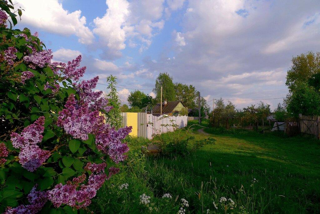 этого деревенский пейзаж с цветущими садами фото есть, одном визуально
