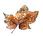 Amber_Droplets_LCT_09_08.png