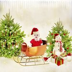 магия Рождества (62)