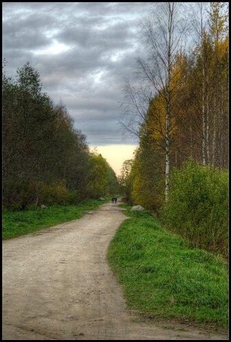 Дача. Синявино. 2011