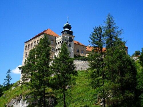 Pieskowa Ska?a, zamek