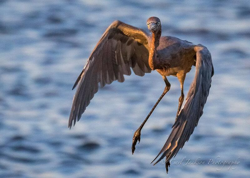 Новые прекрасные фотографии природы и городских сюжетов (Unsplash и Flickr) 0 14523b 7a3470db XL