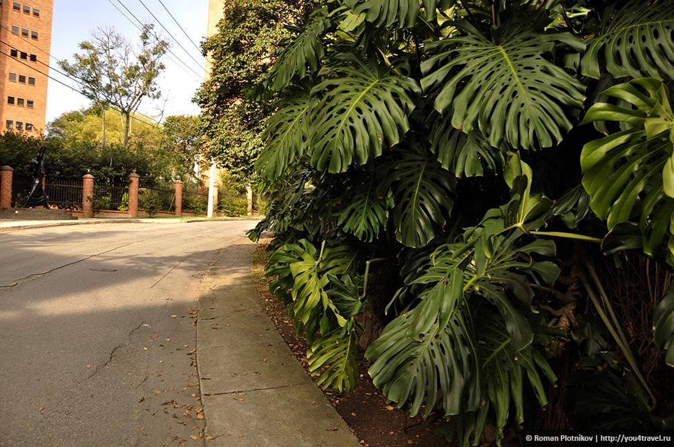 0 14e9d4 ff605901 orig День 171. Кладбище, где похоронен колумбийский наркобарон Пабло Эскобар, и его дом в Медельине