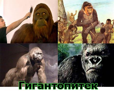 Самые большие животные в мире, существовавшие на земле (фото 5)