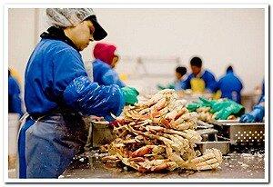 В столице Приморья изъяты потенциально опасные для потребителей морепродукты