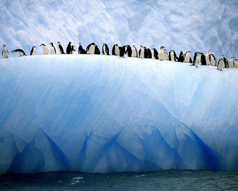 Cidades do mundo for Antarctica places to stay