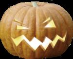 ial_sh_sf_pumpkin2.png