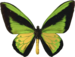 RR_VictorianBliss_AddOn (8).png