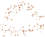 осенние тропинки (57)