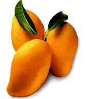 фрукт манго_frukt mango