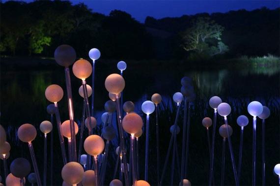 Bruce Munro | Световые инсталляции