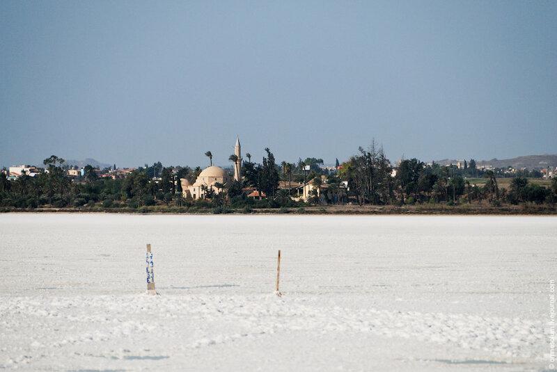 Путешествие по Кипру. Солёное озеро и мечеть Хала Султан Текке.