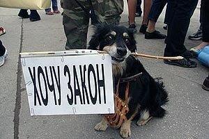 В Приморье вынесли приговор похитителю сторожевых собак