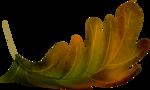 осенние тропинки (71)