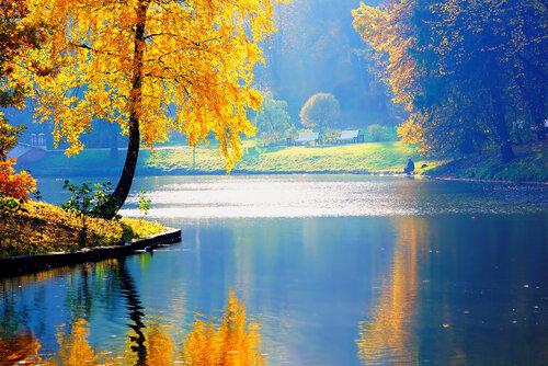 просто осень