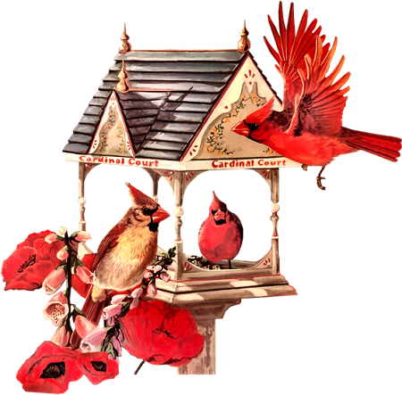 Birdhouse20_dhedey.png