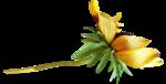 осенние тропинки (48)