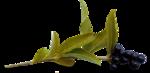 осенние тропинки (37)
