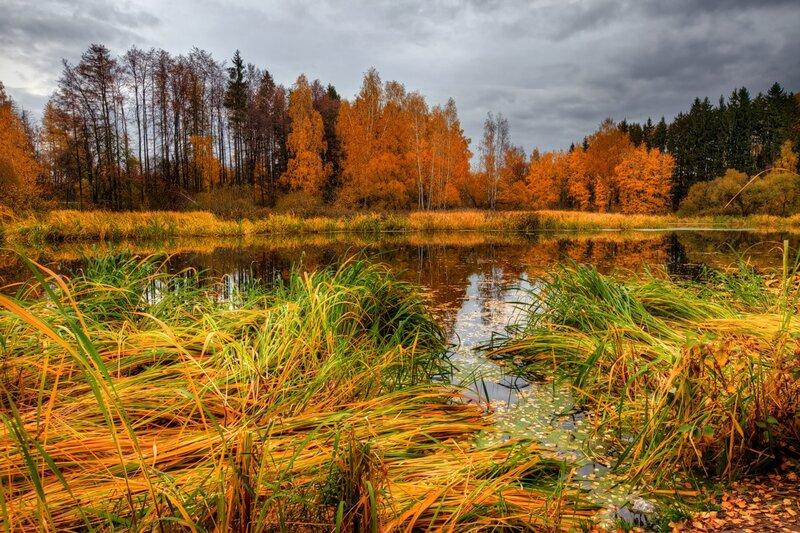 Autumn landscape 05