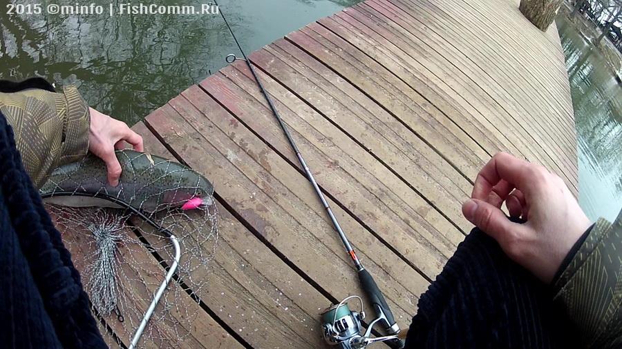 minfo (c) FishComm.Ru