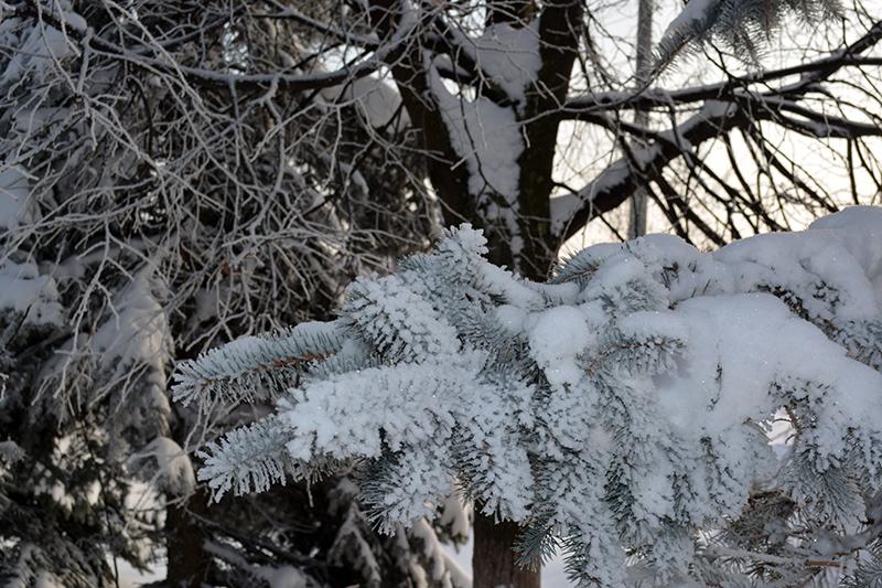 ещё зима