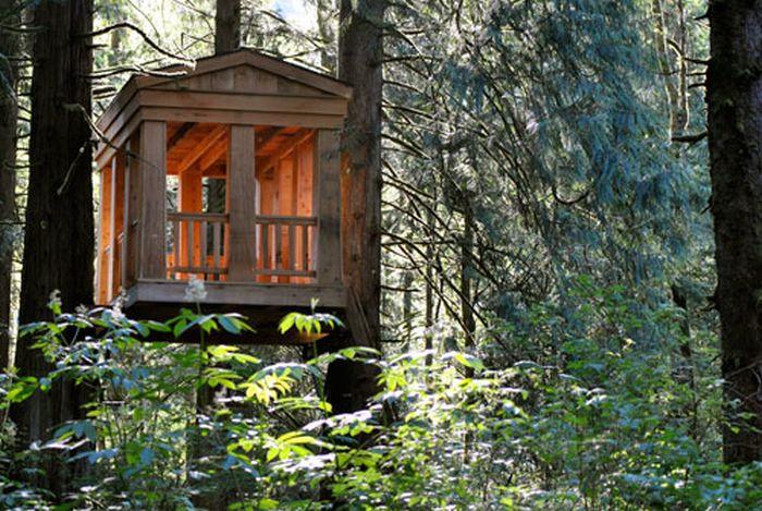 Наши свадьбы в таких домиках не проведешь :))