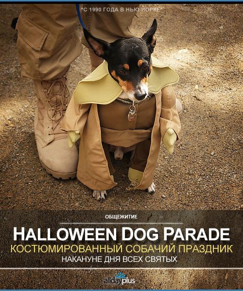 Костюмированный парад собак накануне Хэллоуина в Tompkins Square Park, Нью-Йорк