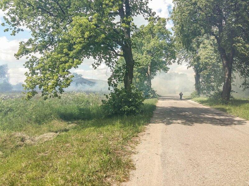 v1528110 Местный байкер в дыму.jpg