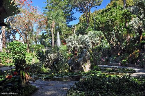 Ла Мортелла - экзотический ботанический сад на Искьи