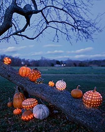 ...хэллоуин, поле, дерево - картинка 4687 на Favim.ru.