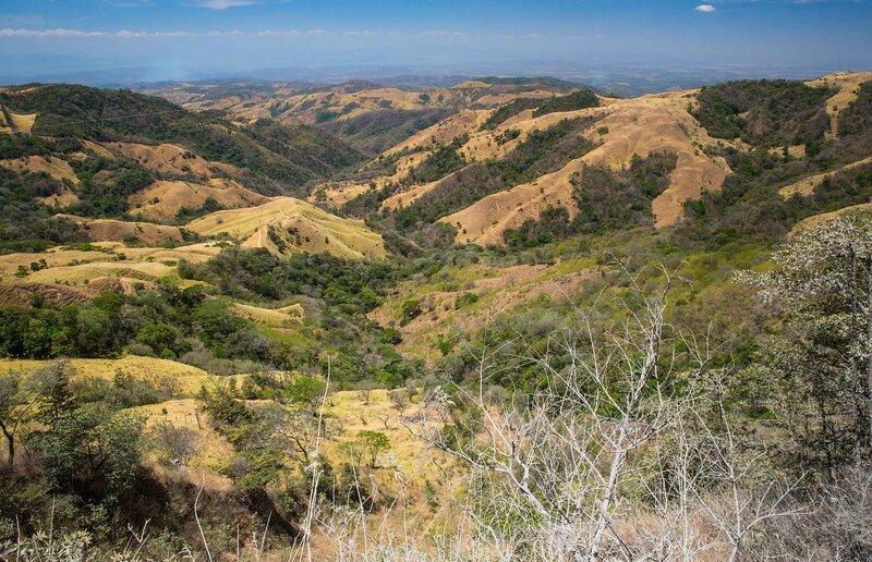 По облачным лесам Коста-Рики.  В поисках Кетцаля и масок Борука.