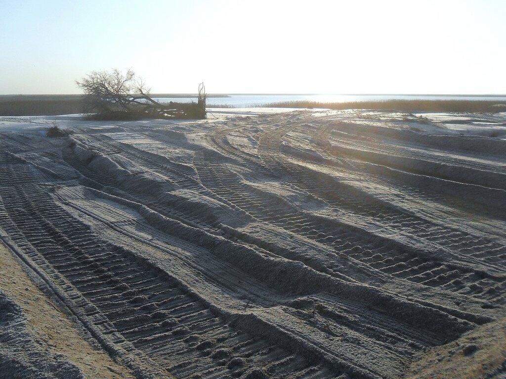 На песках ... SAM_5205.JPG