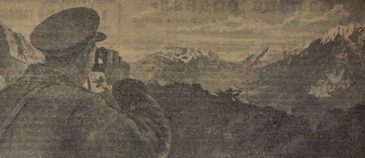 «Красная звезда», 5 ноября 1942 года, битва за Кавказ
