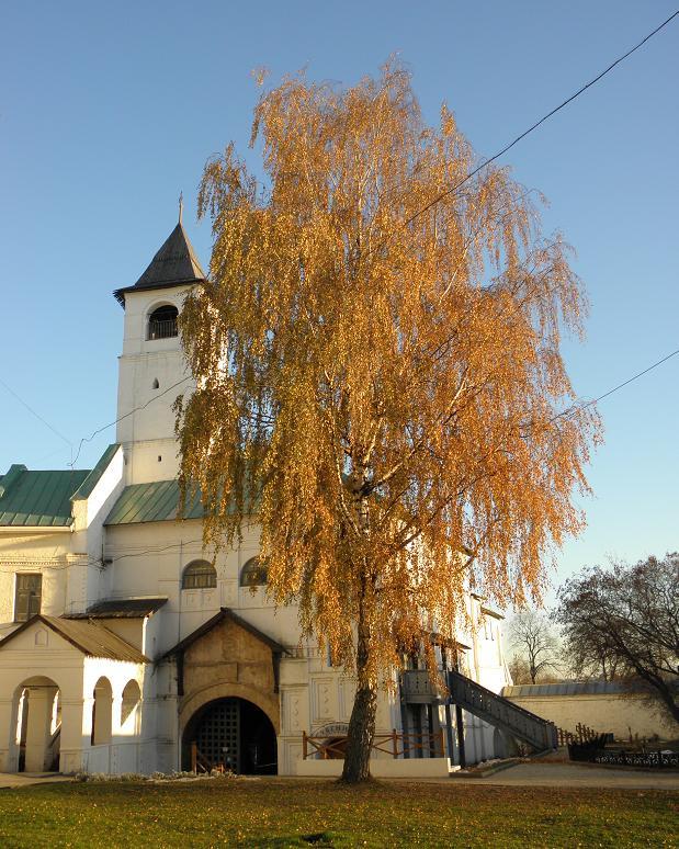 Золотая осень в Ярославле.JPG