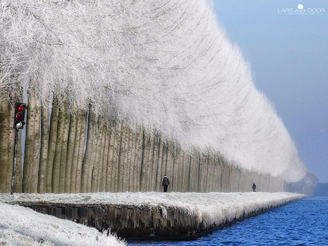 100 самых красивых зимних фотографии: пейзажи, звери и вообще 0 10f5b8 8d1da09c orig