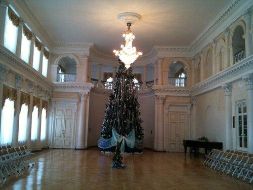 Зал Дворянского собрания Костромы (1837-1838 годы)