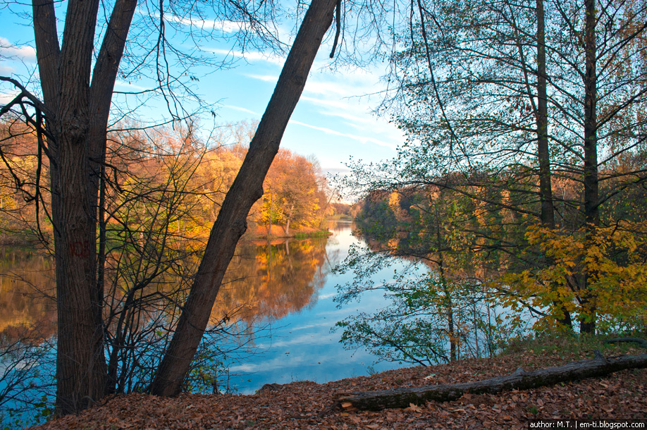 Осенний пейзаж. Фотография.